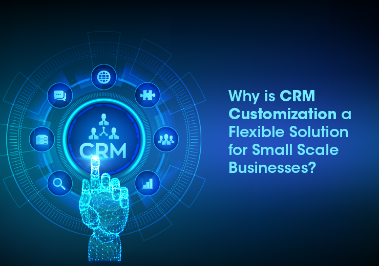 Why is CRM Customization a Flexible Solution for small Scale Businesses?